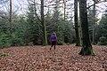 Human walking into Belgian woods (DSC 0087).jpg