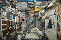 ISS-49 Kate Rubins wears the COURAGE suit in the Destiny lab.jpg