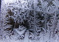 Ice crystals at window07.jpg