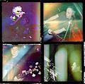 Iguana Lovers 2014.jpg