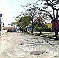 Iguape - SP - panoramio (223).jpg