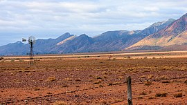 Ikara-Flinders Ranges National Park 16.jpg