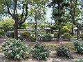 Ikeno-okuen Ikeno-oku Japanese garden and Peony garden.jpg
