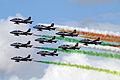 Il Frecce Tricolori 07 (5969389745).jpg