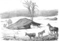 Illustrirte Zeitung (1843) 06 005 2 Zelte der Araber.PNG