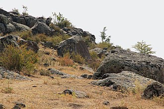İmamkullu relief - Image: Imamkulu 2
