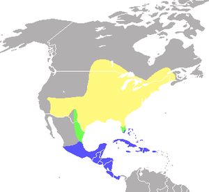 Range map of the Indigo Bunting, Passerina cya...