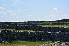Inisheer stone walls.jpg