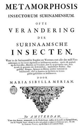 Joseph Mulder - The cover page of Insects of Surinam by Maria Sibylla Merian, with etchings by Joseph Mulder