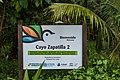 Insel Zapatilla (27124325226).jpg