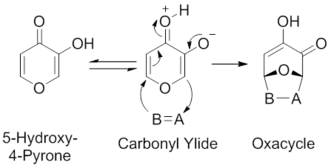 1,3-Dipolar cycloaddition - Scheme 4. Intramolecular Hydrogen Transfer-Mediated Synthesis of Carbonyl Ylides from 5-Hydroxy-4-Pyrones. Modified from Garst, M. E.; McBride, B. J.; Douglass III, J. G. Tetrahedron Lett. 1983, 24, 1675.