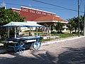 Isla Mujeres - panoramio.jpg