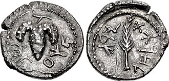 """Bar Kokhba Revolt coinage - Bar Kochba silver Zuz/Denarius,  Undated, but attributed to year 3 (134-135 CE). Obverse: the Grape bunch on vine, surrounded by the name """"Shim'on"""" in paleo-Hebrew. Reverse: A palm branch surrounded by the phrase """"to the freedom of Jerusalem""""."""