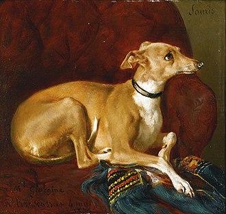 Jacques Raymond Brascassat - Image: Jacques Raymond Brascassat Un lévrier reposant sur la chaise (1836)