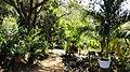Jardin en las Chaguaramas - panoramio (1).jpg