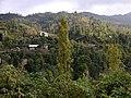Javaherdeh road 1 - panoramio.jpg