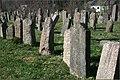 Jewish cemetery in Kedainiai - panoramio (1).jpg