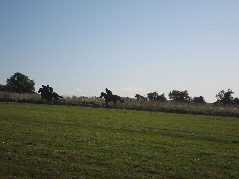File:Jockeys galloping racehorses, Lambourn, Berkshire.jpg