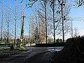 Junction ^ Poplars - geograph.org.uk - 2155261.jpg