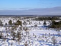 Kõnnu Suursoo winter.jpg