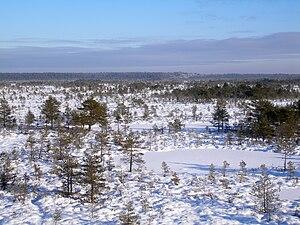 Põhja-Kõrvemaa Nature Reserve - Image: Kõnnu Suursoo winter
