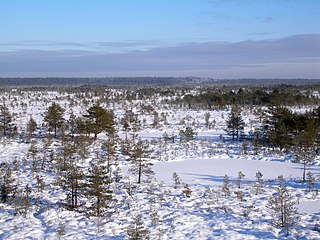 Põhja-Kõrvemaa Nature Reserve Protected area in Estonia
