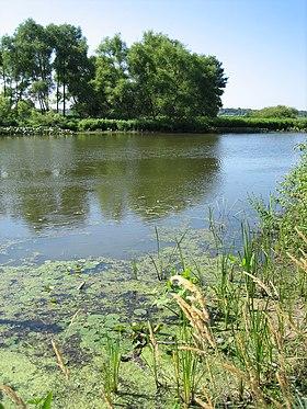 Kalamazoo (rivière)