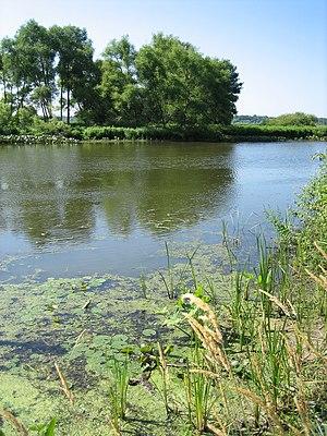 Kalamazoo River - The Kalamazoo River at Saugatuck, Michigan