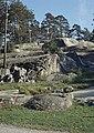 Kallioita Sibeliuspuistossa - XLVIII-1495 - hkm.HKMS000005-km0000m55g.jpg
