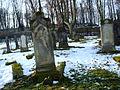 Kamienna Góra, cmentarz żydowski (Aw58) DSC09893.JPG