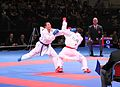 Karate WM 2014 519.JPG