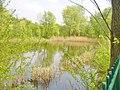 Karpfenpfuhl - Mariendorf (Carp Pool - Mariendorf) - geo.hlipp.de - 36157.jpg