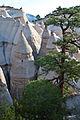 Kasha-Katuwe Tent Rocks NM (9406504879).jpg