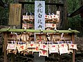 Kasuga Shrine breast plaques.jpg