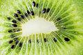 Kiwi-andrea-valori.jpg
