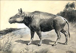 Entelodont - Entelodon by Charles R. Knight