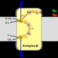 Komplex III.png