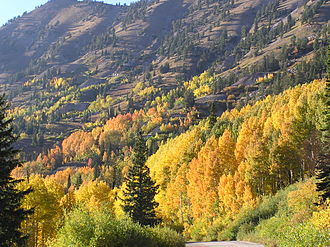 Little Cottonwood Canyon - Image: LC Lfallfoliage 2005