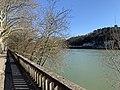 La Saône au niveau de l'île Barbe depuis le quai Sédaillan (Lyon).jpg