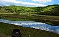 Lake kerkini Δραγατάς Μερκούριος.jpg