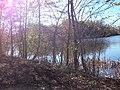 Lambert Lake - panoramio (15).jpg