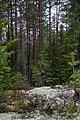 Lankkukallio - panoramio.jpg