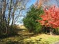 Lasdon Park and Arboretum, Somers, NY - IMG 1451.jpg