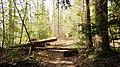Lawrence County, AL, USA - panoramio (5).jpg