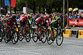Le Tour de France 2015 Stage 21 (19993036838).jpg