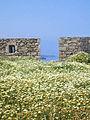 Le fort vénitien (Rethymnon, Crète) (5743896653).jpg
