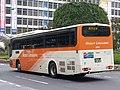 Limousine 360-51150R2 rear.jpg