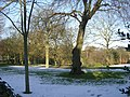 Lister Park - viewed from North Park Road - geograph.org.uk - 1071120.jpg