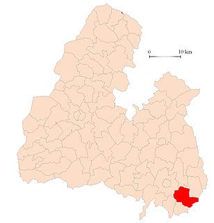 Littleton (electoral division)