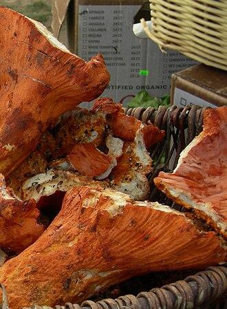 Hypomyces lactifluorum - Image: Lobster mushrooms